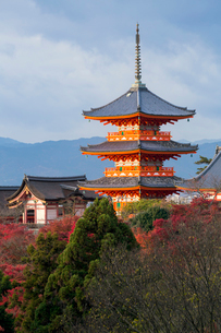 Kiyomizu-dera temple, UNESCO World Heritage Site, Kyoto, Honshu, Japan, Asiaの写真素材 [FYI03783441]
