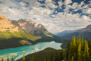 Wide view of Peyto Lake, Banff National Park, UNESCO World Heritage Site, Alberta, Rocky Mountains,の写真素材 [FYI03783593]