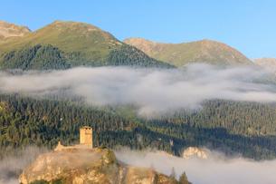 Tower of Steinsberg Castle framed by woods, Ardez, canton of Graubunden, district of Inn, lower Engaの写真素材 [FYI03783695]