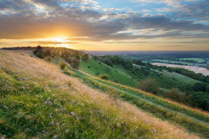 Sunset over Iron-Age hill fort of Beacon Hill, near Highclere, Hampshire, England, United Kingdom, Eの写真素材 [FYI03783753]