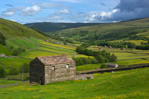 View over the Swaledale valley, near Thwaite, Yorkshire Dales National Park, Yorkshire, England, Uniの写真素材 [FYI03783769]