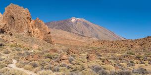 Mount Teide volcano, Teide National Park, UNESCO World Heritage Site, Tenerife, Canary Islands, Spaiの写真素材 [FYI03784000]