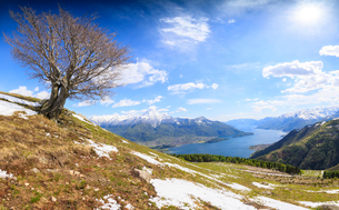 Panorama of meadows partially covered with snow with Lake Como on the background, Montemezzo, Alpe Zの写真素材 [FYI03784098]