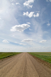Clouds and blue sky over a dirt track in the Badlands of Alberta, near Drumheller, Alberta, Canada,の写真素材 [FYI03784121]