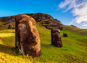 Moais at the quarry on the slope of the Rano Raraku Volcano, Rapa Nui National Park, UNESCO World Heの写真素材 [FYI03784253]