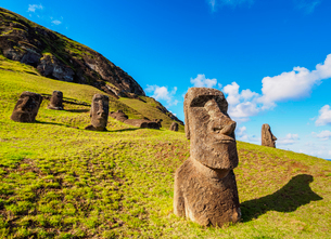 Moais at the quarry on the slope of the Rano Raraku Volcano, Rapa Nui National Park, UNESCO World Heの写真素材 [FYI03784257]
