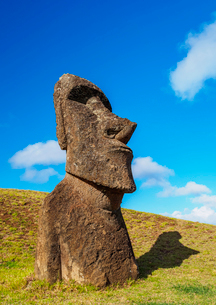 Moai at the quarry on the slope of the Rano Raraku Volcano, Rapa Nui National Park, UNESCO World Herの写真素材 [FYI03784276]