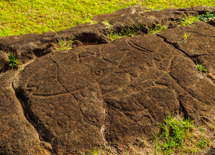 Petroglyphs in Papa Vaka, Rapa Nui National Park, UNESCO World Heritage Site, Easter Island, Chile,の写真素材 [FYI03784280]