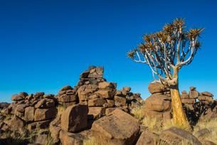 Unusual rock formations, Giant's Playground, Keetmanshoop, Namibia, Africaの写真素材 [FYI03784781]