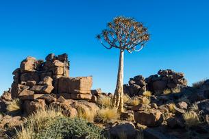 Unusual rock formations, Giants Playground, Keetmanshoop, Namibia, Africaの写真素材 [FYI03784782]