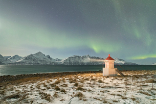 The Northern Lights (aurora borealis) and stars illuminate the lighthouse framed by icy sea, Djupvikの写真素材 [FYI03784799]