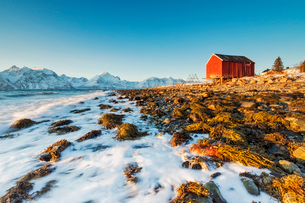 Typical wooden hut called Rorbu surrounded by waves of the cold sea and snowy peaks, Djupvik, Lyngenの写真素材 [FYI03784821]