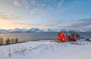 Pink sky at sunset on a wooden hut called Rorbu, frozen sea and snowy peaks, Djupvik, Lyngen Alps, Tの写真素材 [FYI03784828]