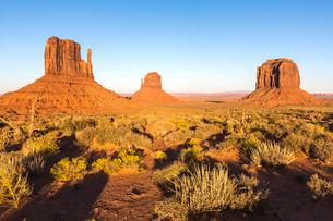 Monument Valley, Navajo Tribal Park, Arizona, United States of America, North Americaの写真素材 [FYI03784869]