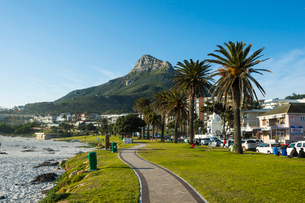 Waterfront of Camps Bay with the Lions Head in the background, suburb of Cape Town, South Africa, Afの写真素材 [FYI03784973]