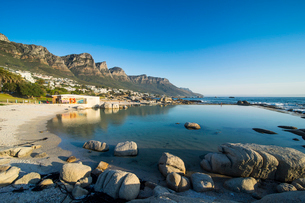 Camps Bay with Table Mountain in the background, suburb of Cape Town, South Africa, Africaの写真素材 [FYI03784974]