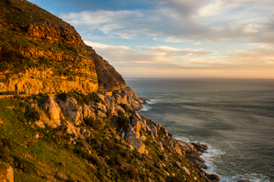 Cliffs of Cape of Good Hope at sunset, South Africa, Africaの写真素材 [FYI03784975]