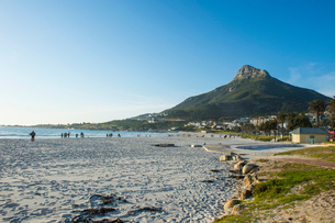 Waterfront of Camps Bay with the Lions Head in the background, suburb of Cape Town, South Africa, Afの写真素材 [FYI03784976]