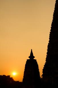 The Mahabodhi Temple at Bodh Gaya, UNESCO World Heritage Site, Bihar, India, Asiaの写真素材 [FYI03785034]