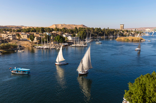 View of The River Nile and Nubian village on Elephantine Island, Aswan, Upper Egypt, Egypt, North Afの写真素材 [FYI03785096]