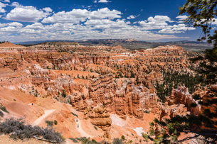 Hikers amongst hoodoo formations on the Sunrise Point Trail in Bryce Canyon National Park, Utah, Uniの写真素材 [FYI03785224]
