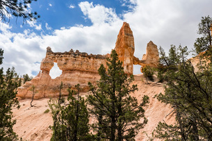 View of Two Towers Bridge from the Fairyland Trail in Bryce Canyon National Park, Utah, United Stateの写真素材 [FYI03785233]