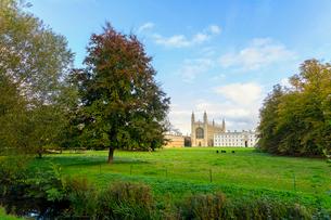 King's College Chapel from the Backs, Cambridge University, Cambridge, Cambridgeshire, England, Unitの写真素材 [FYI03785406]