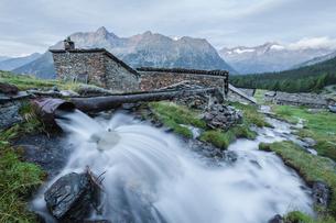 Flowing water of alpine creek, Entova Alp, Malenco Valley, Sondrio province, Valtellina, Lombardy, Iの写真素材 [FYI03785422]