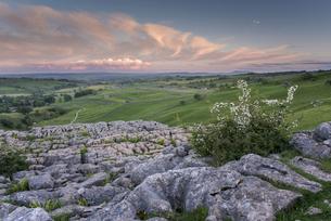 View of limestone pavement, Malham Cove, Malham, Yorkshire Dales National Park, North Yorkshire, Engの写真素材 [FYI03785467]