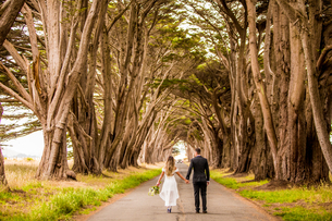 Couple in engagement dress, Marin, California, United States of America, North Americaの写真素材 [FYI03785524]