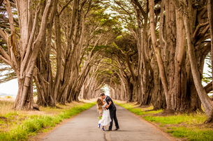 Couple in engagement dress, Marin, California, United States of America, North Americaの写真素材 [FYI03785525]