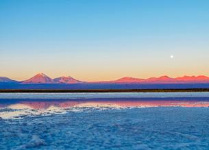 Laguna Baltinache at sunset, Salar de Atacama, Antofagasta Region, Chile, South Americaの写真素材 [FYI03785662]
