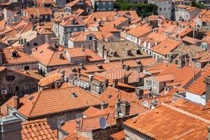Looking across Dubrovnik's terracotta tiled rooftops, Dubrovnik, Croata, Europeの写真素材 [FYI03785696]