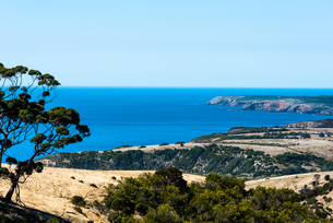 Sea views at Flinders Chase National Park, Kangaroo Island, South Australia, Australia, Pacificの写真素材 [FYI03785742]