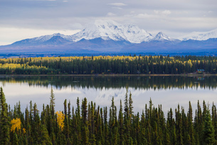 Wrangell-St. Elias National Park landscape from the Willow Lake, UNESCO World Heritage Site, Alaska,の写真素材 [FYI03785790]