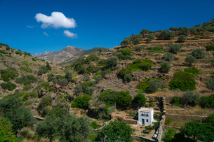 Small white dovecote in hilly country near Kamares Village, Sifnos, Cyclades, Greek Islands, Greece,の写真素材 [FYI03785838]