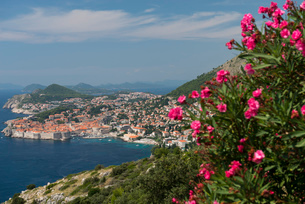 Dubrovnik and islands, Croatia, Europeの写真素材 [FYI03785910]