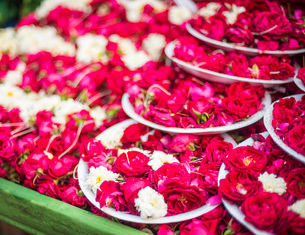 Flowers for offering at a Hindu temple, New Delhi, India, Asiaの写真素材 [FYI03786143]