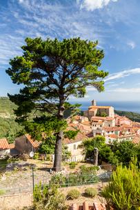 Village of Poggio on the hills of Monte Capanne, Marciana, Elba Island, Livorno Province, Tuscany, Iの写真素材 [FYI03786342]