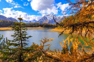 Palu Lake during autumn, Valmalenco, Valtellina, Lombardy, Italy, Europeの写真素材 [FYI03786904]