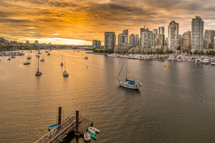 View of Vancouver skyline and False Creek as viewed from Cambie Street Bridge, Vancouver, British Coの写真素材 [FYI03787236]