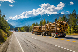 Timber laden Freightliner travelling on the Trans Canada Highway in Glacier National Park, British Cの写真素材 [FYI03787258]