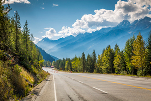 Scenic view of the mountains aligning the Trans Canada Highway in Glacier National Park, British Colの写真素材 [FYI03787259]