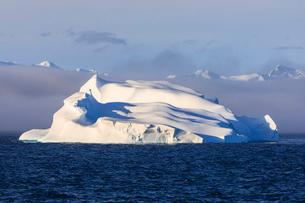 Huge iceberg, evening light, clearing mist, Bransfield Strait, near South Shetland Islands and Antarの写真素材 [FYI03787472]