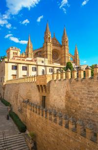 La Seu Cathedral, Palma de Mallorca, Mallorca (Majorca), Balearic Islands, Spain, Europeの写真素材 [FYI03787485]
