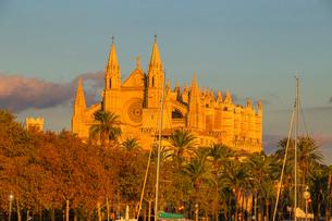 La Seu Cathedral, Palma de Mallorca, Mallorca (Majorca), Balearic Islands, Spain, Europeの写真素材 [FYI03787495]