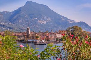 Elevated view overlooking the harbour at Riva del Garda, Lake Garda, Trentino, Italian Lakes, Italy,の写真素材 [FYI03787578]