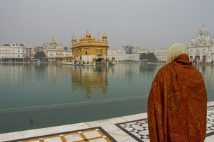 Sikh devotee of the Golden Temple, Amritsar, the Punjab, India, Asiaの写真素材 [FYI03787618]