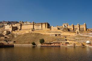 Amber Fort overlooking Maota Lake, Jaipur, Rajasthan, India, Asiaの写真素材 [FYI03787619]
