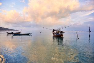 Fishing boats, Koh Samui, Thailand, Southeast Asia, Asiaの写真素材 [FYI03787729]